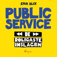 Public Service - de roligaste inslagen