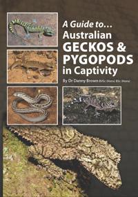Guide to Australian Geckos & Pygopods