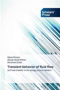 Transient behavier of fluid flow