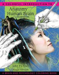 A Colorful Introduction to the Anatomy of the Human Brain Coloring Book
