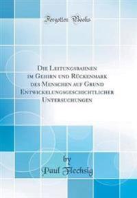 Die Leitungsbahnen im Gehirn und Rückenmark des Menschen auf Grund Entwickelungsgeschichtlicher Untersuchungen (Classic Reprint)