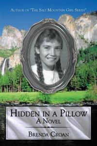 Hidden in a Pillow