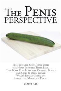 Penis Perspective