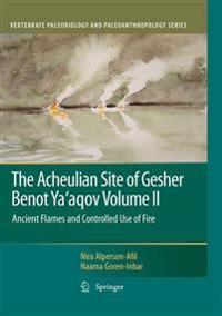 The Acheulian Site of Gesher Benot Ya'aqov Volume II