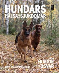 Hundars hälsa och sjukdomar