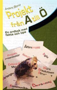 Projekt från A till Ö : en ordbok med fakta och tips