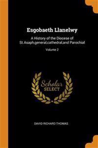 ESGOBAETH LLANELWY: A HISTORY OF THE DIO