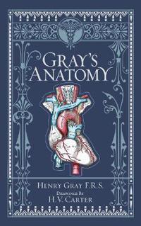 Gray's Anatomy (BarnesNoble Collectible Classics: Omnibus Edition)