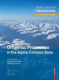 Orogenic Processes in the Alpine Collision Zone