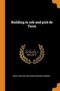 Building in cob and pise de Terre