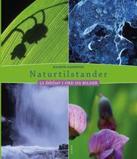 Naturtilstander - Haakon Gaukstad   Ridgeroadrun.org