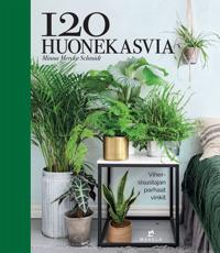 120 huonekasvia