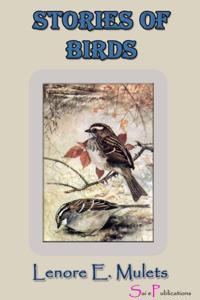 StoriesA ofA Birds