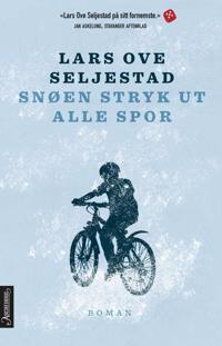 Snøen stryk ut alle spor - Lars Ove Seljestad pdf epub