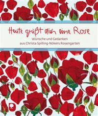 Heute grüßt dich eine Rose