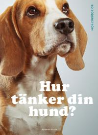 Hur tänker din hund?