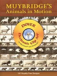 Muybridge's Animals in Motion