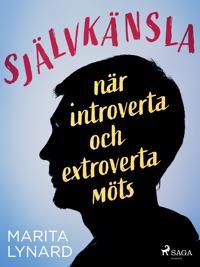Självkänsla : när introverta och extroverta möts - Marita Lynard pdf epub