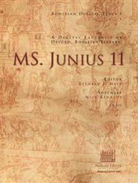 Ms. Junius 11
