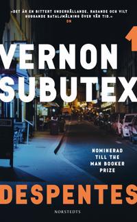 Vernon Subutex 1 - Virginie Despentes pdf epub