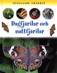 Spännande småkryp Dagfjärilar och nattfjärilar