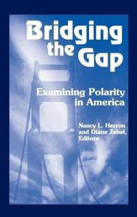 Bridging the Gap: Examining Polarity in America