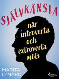 Självkänsla : när introverta och extroverta möts