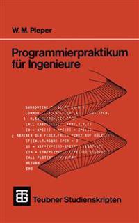 Programmierpraktikum Für Ingenieure
