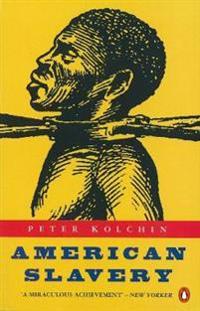 American slavery - 1619-1877