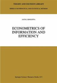 Econometrics of Information and Efficiency