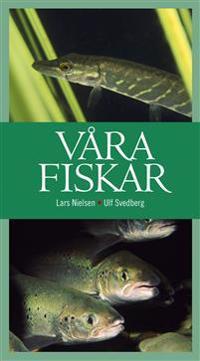 Våra fiskar