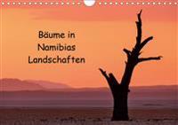 Bäume in Namibias Landschaften (Wandkalender 2020 DIN A4 quer)