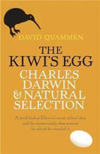 The Kiwi's Egg
