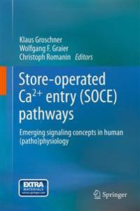 Store-operated Ca2+ Entry Soce Pathways