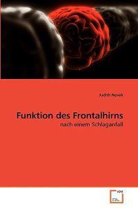 Funktion Des Frontalhirns