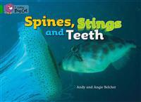 Spines, Stings and Teeth Workbook