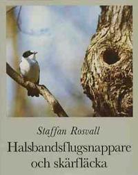 Halsbandsflugsnappare och skärfläcka : några gotländska fåglars historia