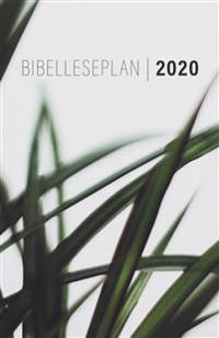 Bibelleseplan 2020 -  pdf epub