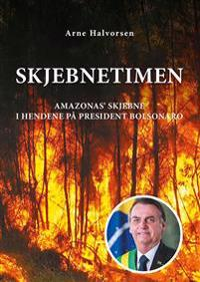 Skjebnetimen - Arne Halvorsen pdf epub