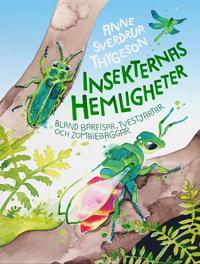 Insekternas hemligheter : bland bärfisar, tvestjärtar och zombiebaggar