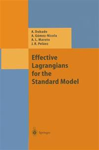 Effective Lagrangians for the Standard Model