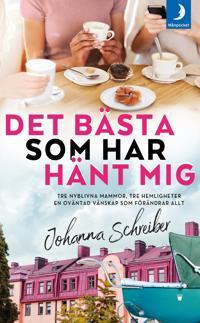 Det bästa som har hänt mig - Johanna Schreiber pdf epub