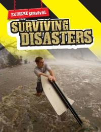 Surviving disasters