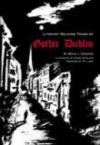 A Literary History of Gothic Dublin