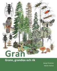 Gran : grann, grandios och rik - Bengt Ehnström pdf epub