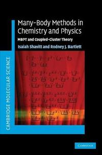 Many-Body Methods in Chemistry and Physics