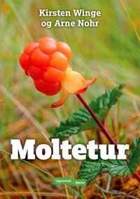 Moltetur - Kirsten Winge, Arne Nohr pdf epub