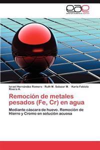 Remocion de Metales Pesados (Fe, Cr) En Agua