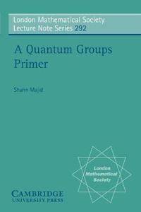 A Quantum Groups Primer