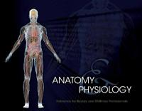 Student Reference for Anatomy & Physiology